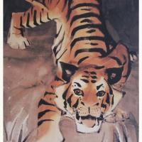Young Tiger Print